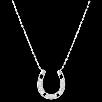 Fastened in Sparkles Horseshoe Necklace (NC3433)