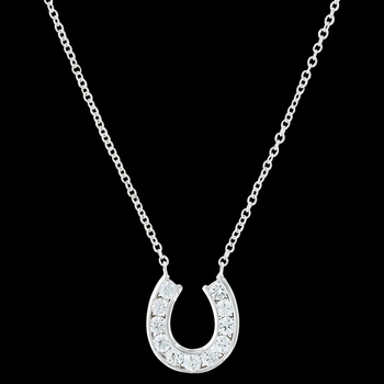 Hanging Horseshoe Basket Necklace (NC3415)