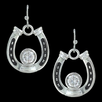 Horseshoe Treasure Earrings (ER3208)