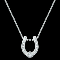 Lucky Trillion Treasure Horseshoe Necklace (NC3216)