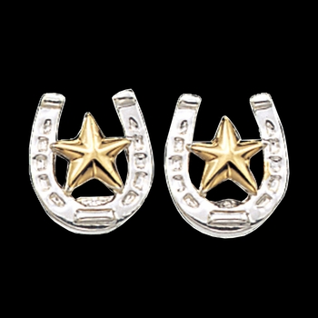 Small Stars & Horseshoe Post Earrings (ER803)