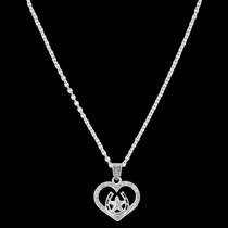 Star of My Heart Horseshoe Necklace (NC3404)