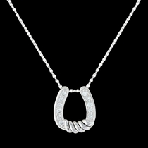 Twisting Horseshoe Necklace (NC3372)