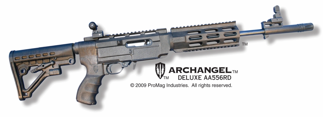 Archangel Rifle (10-22*) Deluxe (ARS) Package
