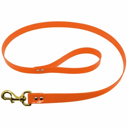 1 in. Day Glow 4 ft. Lead