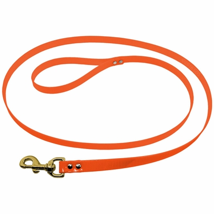 1 in. Day Glow 6 ft. Lead