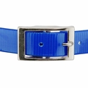 buy discount  1 in. Day Glow Center Ring Collar Front of Buckle Detail