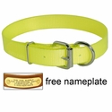 1 in. Day Glow D-End Collar