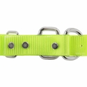 buy discount  1 in. Day Glow D-End Collar Back of Buckle Detail