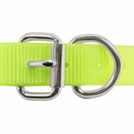 shop 1 in. Day Glow D-End Collar Front of Buckle Detail