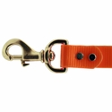 buy discount  1 in. Day Glow Lead Snap Detail