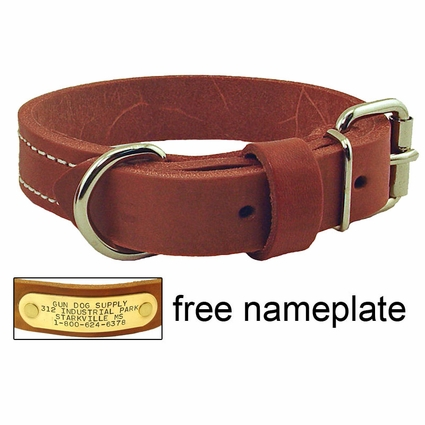 1 in. Gun Dog Deluxe Leather Standard Dog Collar - #RTEN1