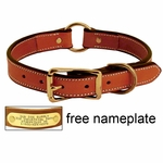 shop K-9 Komfort 1in. Deluxe Leather Center Ring Collar