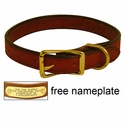 1 in. K-9 Komfort Deluxe Leather Standard Dog Collar