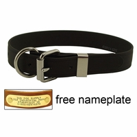 buy discount  CLEARANCE -- 1 in. K-9 Komfort EverFlex D-end Dog Collar with Stainless Steel Hardware
