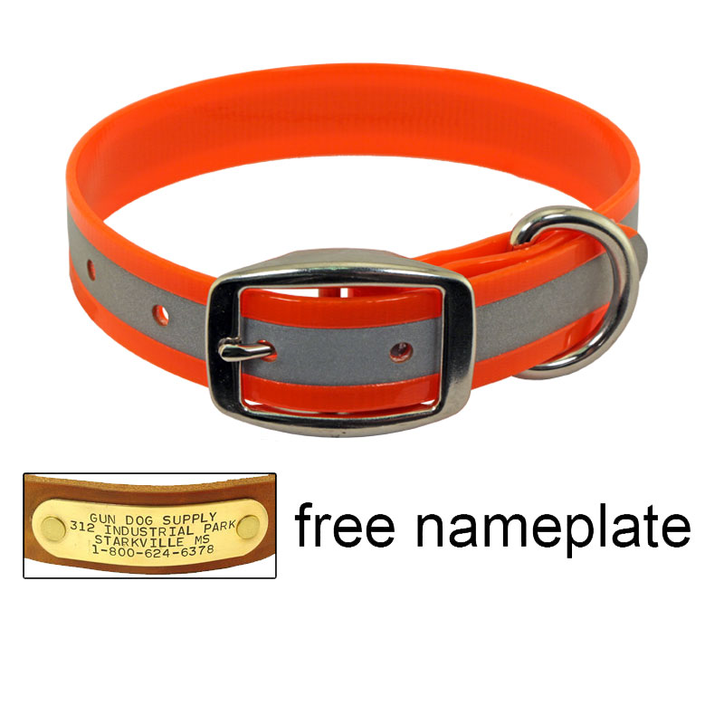 Dog Collar Name Plate Built In