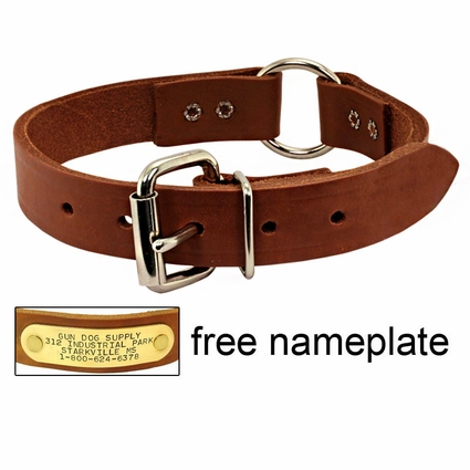 1 in. Leather Center-Ring Collar