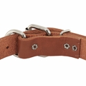 buy discount  1 in. Leather Dee-End Collar Back of Buckle Detail