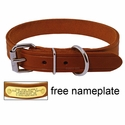 1 in. Leather Standard Dog Collar