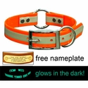 buy discount  1 in. Night Glow Center Ring Collar with Glow-in-the-Dark Strip