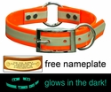 1 in. Night Glow Center Ring Collar with Glow-in-the-Dark Strip
