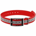 buy discount  1 in. Red Reflective Collar Strap