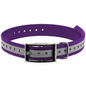buy discount  1 in. Violet Reflective Collar Strap