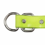 shop 1 in. Day Glow D-End Collar Buckle Edge Detail