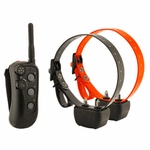 shop 2 Dog Remote Training Collars from DT Systems