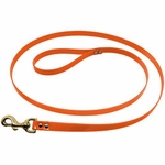 shop 3/4 in. Day Glow 6 ft. Lead