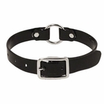 shop 3/4 in. Day Glow Center Ring Puppy / Small Dog Collar -- 12 inch