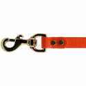 buy discount  3/4 in. Day Glow Lead Snap Detail