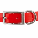 buy discount  3/4 in. Day Glow Standard Puppy/Small Collar Front of Buckle Detail
