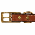 buy discount  3/4 in. K-9 Komfort Deluxe Leather Center Ring Puppy/Small Breed Collar Buckle Inside Detail
