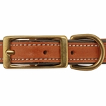 shop 3/4 in. K-9 Komfort Deluxe Leather Center Ring Puppy/Small Breed Collar Front of Buckle Detail