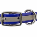 buy discount  3/4 in. K-9 Komfort Reflective Center Ring Puppy Collar Front of Buckle Detail