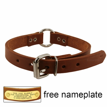 3/4 in. Leather Center Ring Puppy / Small Dog Collar