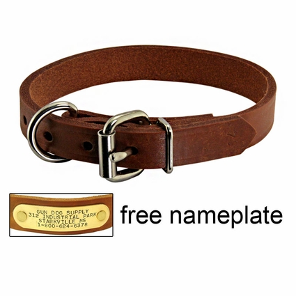 3/4 in. Leather D-End Puppy / Small Dog Collar