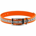 buy discount  3/4 in. Orange Reflective Collar Strap