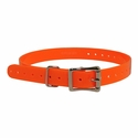 buy discount  3/4 in. Orange Replacement Collar Strap