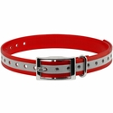 buy discount  3/4 in. Red Reflective Collar Strap