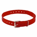 buy discount  3/4 in. Red Replacement Collar Strap