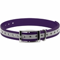 buy discount  3/4 in. Violet Reflective Collar Strap