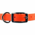 buy discount  3/4 inch TufFlex Collar Front of Buckle Detail
