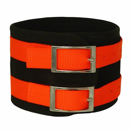 4 in. Overkill Nylon Hog Dog Collar by Leather Brothers