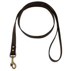 shop 5 ft. Leather Dog Snap Lead by Filson
