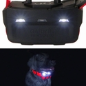 buy discount  Alpha TT15 Collar Locator Lights