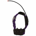 buy discount  Alpha TT15 Violet Collar