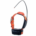 buy discount  Astro T5 Collar