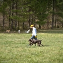 buy discount  Attendee training with his dog